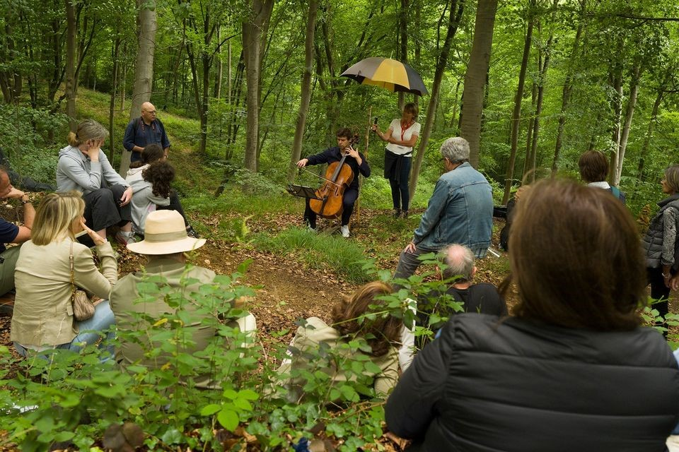 The Festival des forêts nevertheless took place !